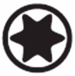 bit gwiazdkowy piktogram